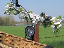 Flores em um guiador de uma bicicleta foto de stock royalty free