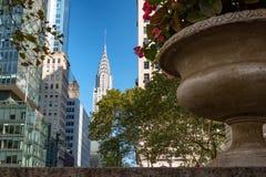 Flores em um plantador em New York City, com arranha-céus fotografia de stock