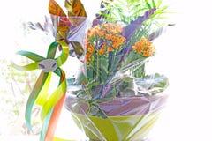 Flores em um potenciômetro Fotografia de Stock Royalty Free