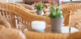 Flores em um potenciômetro na mobília de vime interior Foto de Stock
