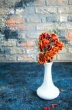 Flores em um vaso Imagens de Stock Royalty Free