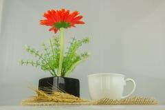 flores em um vaso de vidro quadrado Fotos de Stock Royalty Free