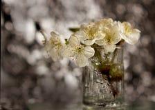Flores em um vaso imagem de stock