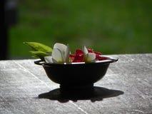 Flores em uma bacia Fotografia de Stock Royalty Free