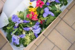 Flores em uma caixa Fotos de Stock