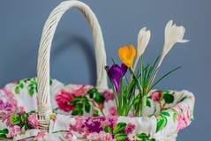 Flores em uma cesta Fotografia de Stock