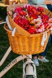 Flores em uma cesta da bicicleta imagens de stock