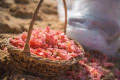 Flores em uma cesta na areia Fotografia de Stock Royalty Free