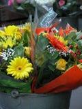 Flores em uma cubeta. imagem de stock royalty free