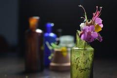 Flores em uma garrafa quebrada Imagens de Stock
