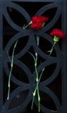 Flores em uma porta Foto de Stock