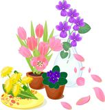 Flores em uns potenciômetros Imagem de Stock Royalty Free