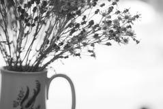Flores en blanco y negro Fotos de archivo libres de regalías