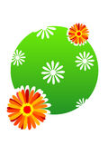 Flores en círculo imagen de archivo libre de regalías