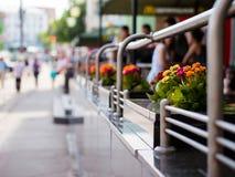 Flores en café al aire libre Fotos de archivo