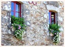 Flores en cajas de ventana Imagenes de archivo