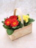 Flores en cesta fotografía de archivo