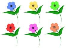 Flores en color Ilustración del Vector