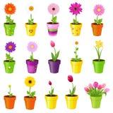 Flores en crisoles libre illustration