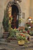 Flores en crisoles Fotos de archivo libres de regalías