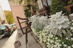 Flores en crisoles Foto de archivo