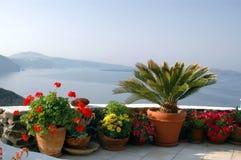 Flores en crisoles sobre el mar Foto de archivo