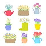 Flores en diversos potes Conjunto de flores del resorte Ilustración del vector aislada Foto de archivo libre de regalías