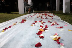 Flores en el camino de la boda Imagen de archivo