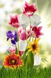Flores en el cierre del jardín para arriba Imagen de archivo