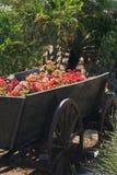Flores en el coche de madera Foto de archivo libre de regalías