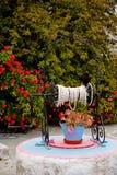 Flores en el compartimiento Imagen de archivo
