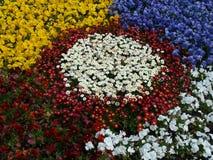 Flores en el en del  del ri KÅ del  de ÅŒdÅ Foto de archivo libre de regalías