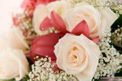 Flores en el fondo blanco Fotos de archivo
