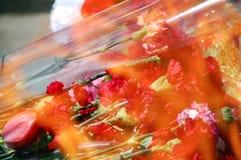 Flores en el fuego Imagen de archivo libre de regalías