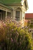 Flores en el jardín de un chalet Fotografía de archivo libre de regalías