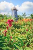 Flores en el jardín en un día y un molino de viento Imagen de archivo