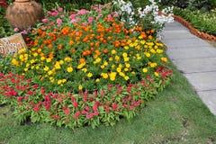 Flores en el parque Imagen de archivo libre de regalías