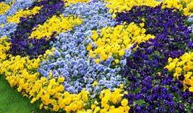 Flores en el parque de Ginebra Fotografía de archivo