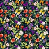 Flores en el prado, fondo floral repetido watercolor ilustración del vector
