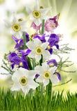 Flores en el primer del jardín Imagenes de archivo