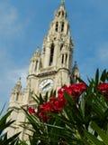 Flores en el Rathaus Fotografía de archivo libre de regalías