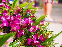 Flores en el templo, budista, Laos Fotos de archivo libres de regalías