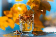 Flores en el vidrio Imagenes de archivo