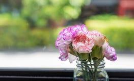 Flores en florero cerca de la ventana fotografía de archivo libre de regalías