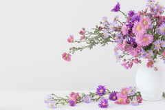 Flores en floreros en el fondo blanco Imagen de archivo libre de regalías