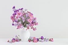 Flores en floreros en el fondo blanco Fotos de archivo libres de regalías
