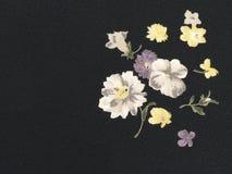 Flores en fondo negro Foto de archivo libre de regalías