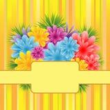 Flores en fondo rayado Imagenes de archivo