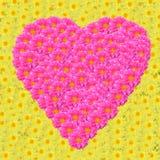 Flores en forma de corazón. Fotografía de archivo