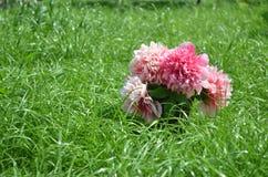 Flores en hierba Fotos de archivo